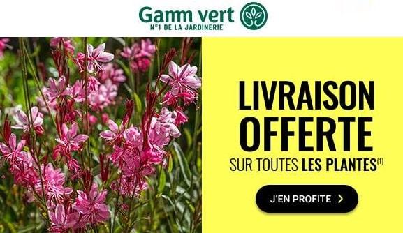 Livraison Gratuite Sur Toutes Les Plantes Sur Gamm Vert