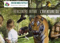 Zoo du Bois d'Attilly moins cher