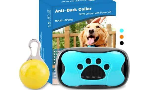 collier anti aboiement automatique pour chien GoPetee pas cher