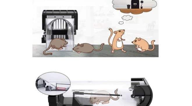 piège à souris réutilisable sans danger Konvitit