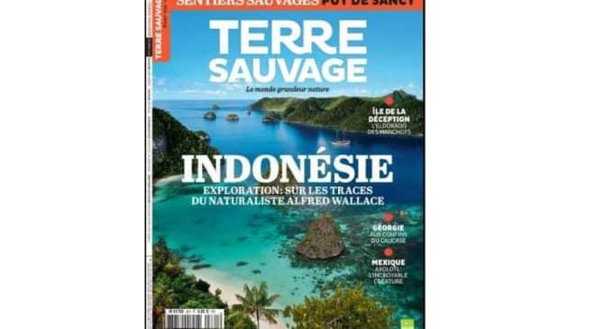 Abonnement magazine Terre Sauvage pas cher 29€ les 10 numéros au lieu de 69€