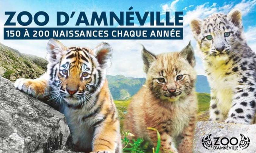 Zoo Amnéville moins cher