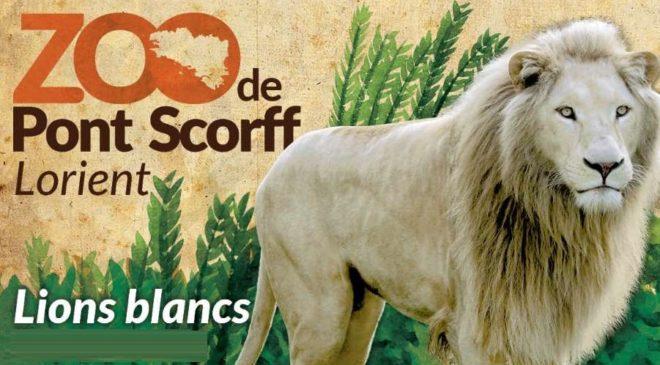 Zoo de Pont Scorff moins cher