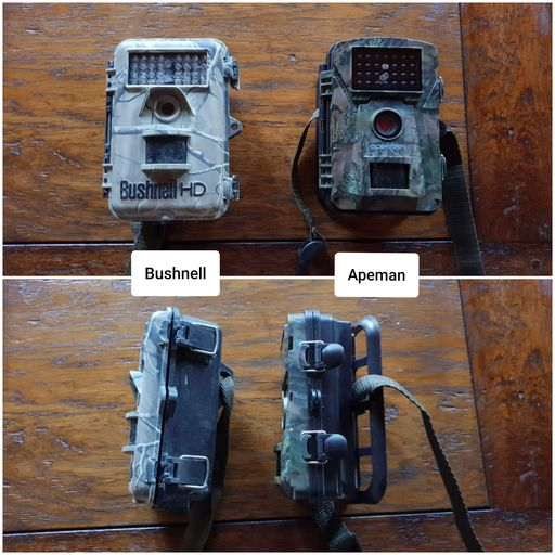 Comparatif Bushnell camera Apeman