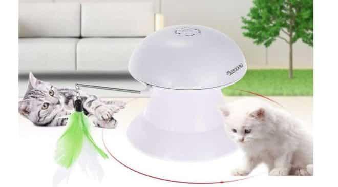 jouet électrique pour chat DADYPET 2 en 1 rechargeable