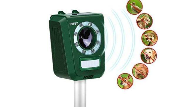 appareil répulsif à ultra son et capteur infrarouge de jardin solaire réglable