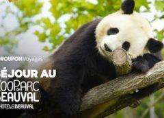 Séjour Les Hauts de Beauval et entrée ZooParc Beauval moins cher