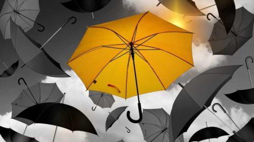 Tous les parapluies en soldes sur Le Monde Du Parapluie