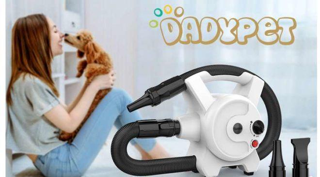 sèche poils électrique 2400w Dadypet (température et vitesse réglables)