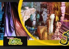 Visite guidée de la Grotte de la Salamandre pas chère
