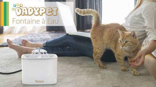 fontaine à eau chat-chien électrique avec filtre charbon Dadypet
