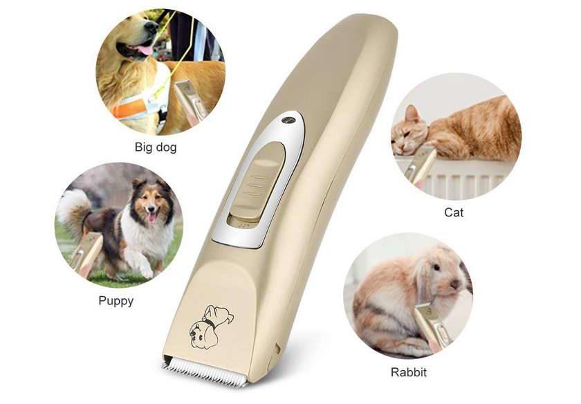 tondeuse à poils chien Haofy rechargeable