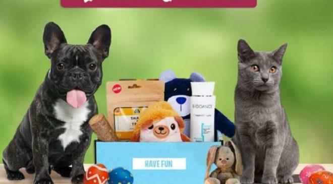 Bons achats Shop Wouf, Miaou box ou Wouf box