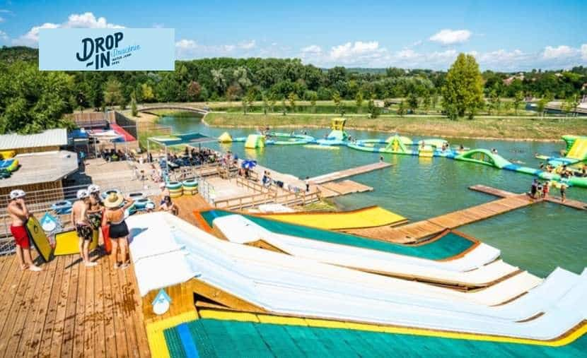 Drop in Dracénie Water Jump moins cher