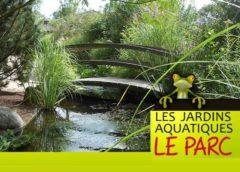 Parc attractions aquatique Wave Island pas cher