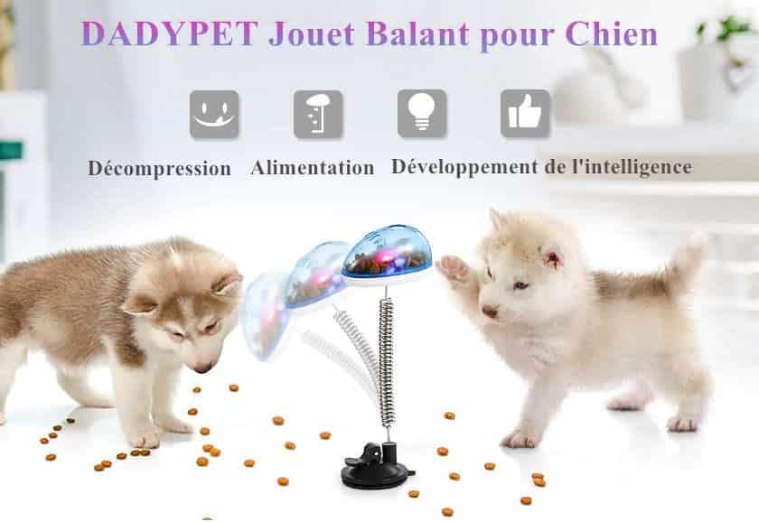 jouet sur ressort distributeur de croquettes Dadypet