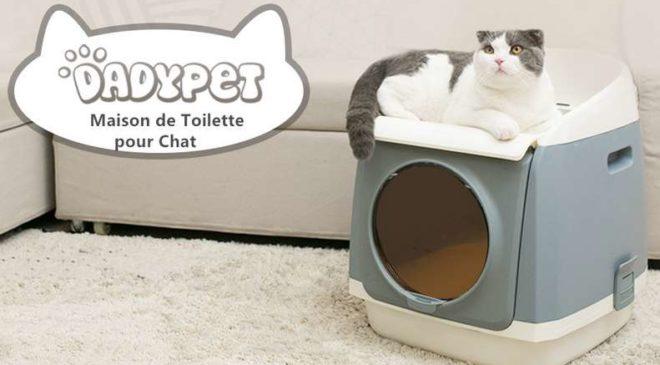 maison bac à litière pour chat 2 étages Dadypet