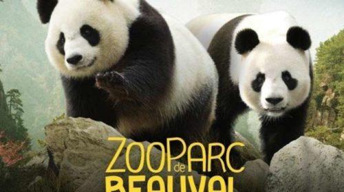 Billet 2 jours pour le ZooParc de Beauval moins cher