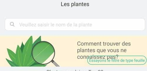 recherche plante Flower Care Plant Monitor Bluetooth Vistefly