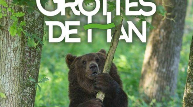 Pass domaine des Grottes Han en Belgique pas cher