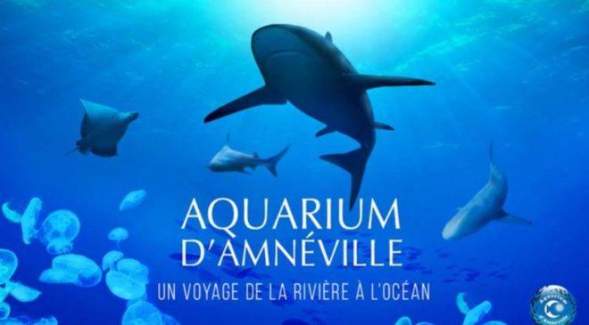 Billet entrée Aquarium d'Amnéville pas cher