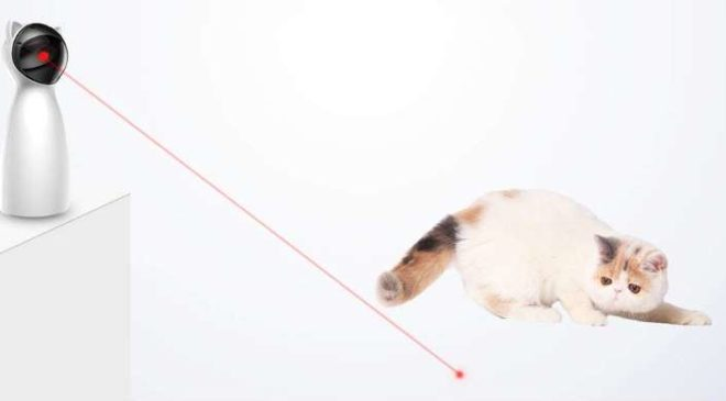 jouet point rouge pour chat Decdeal