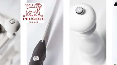 20€ De Remise Sur Peugeot Saveurs