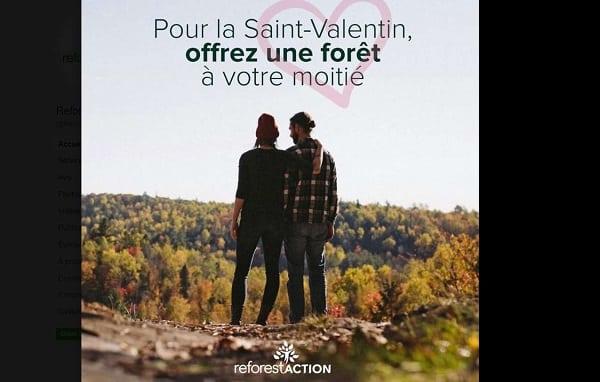 Saint Valentin écolo Offrez Un Ou Des Arbres à Votre Moitié