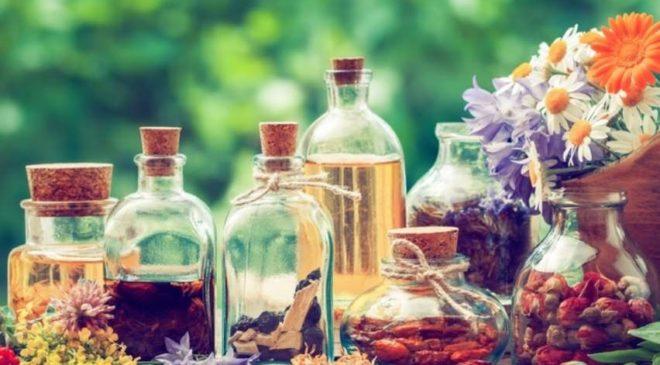 Formation Herboristerie En Ligne Pas Chère Avec International Open Academy