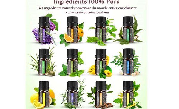 Aromathérapie Lot De 12 Flacons D'huiles Essentielles 5ml 100% Anjou