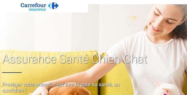 Assurance Santé Chien Chat Sur Carrefour Assurance