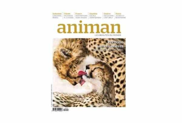 abonnement animan magazine pas cher