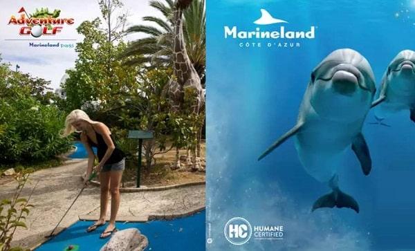 Billet Parc Marineland Et Adventure Golf Moins Cher