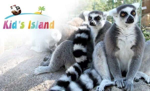 Entrée Kid's Island de Marineland pas chère