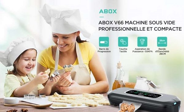 Machine Sous Vide Automatique Alimentaire Abox V66