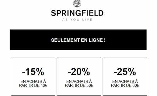 15% à 25% De Reduction Avec Les Remises Paliers De Springfield