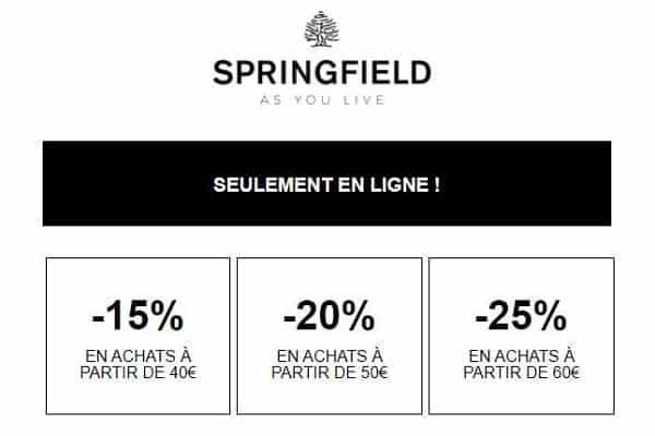 15% à 25% De Reduction Avec Les Remises Paliers De Springfield