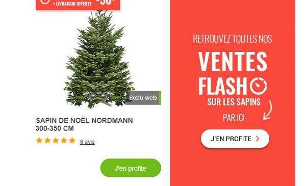 Vente Flash Sapins Naturels Nordmann Livré Chez Vous Gamm Vert