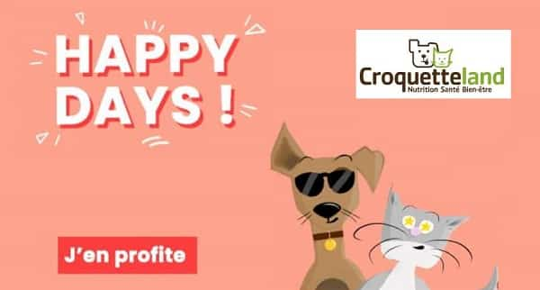 offre happy days croquetteland