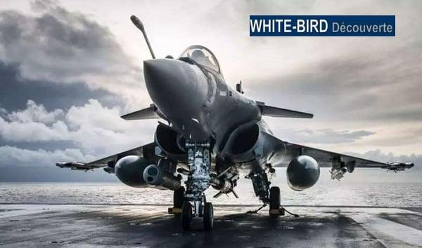 offre spéciale simulateur d'avion de chasse pas cher white bird