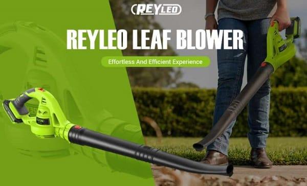 souffleur à feuilles mortes sans fil 18v reyleo rllb01d
