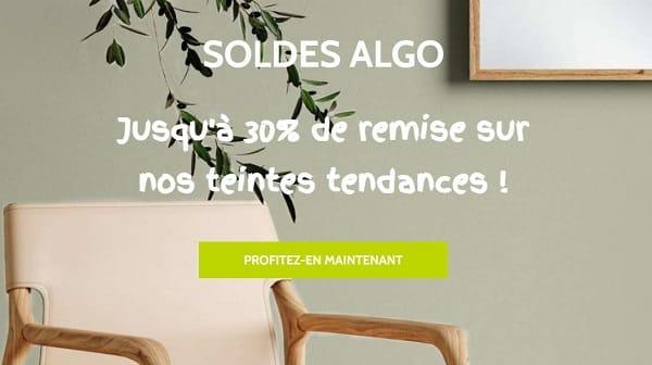 Achetez votre peinture écologique moins chère pendant les soldes peinture Algo
