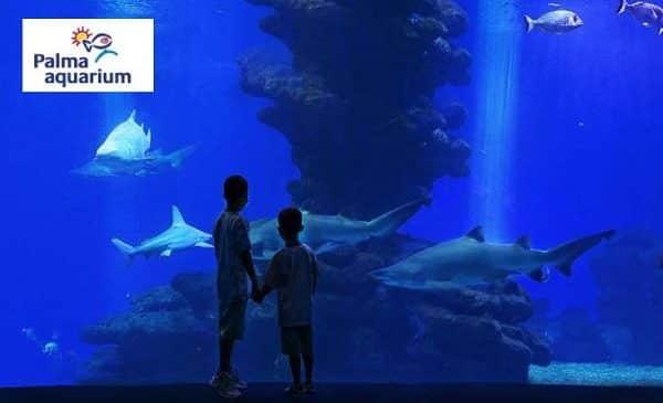 billet entrée Palma Aquarium moins cher Majorque