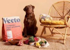 remise de 50% sur votre 1ére commande d'alimentation adaptée pour chien veeto