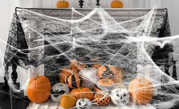 fausse toile d'araignée et 30 araignées yumcute